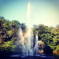 Sonsbeek park waterfount